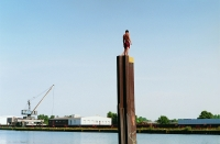 Kanalspringer, Foto von Brigitte Kraemer (c)